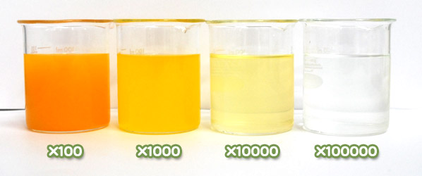 ベーターカロテン・ベーターカロチンWの水溶希釈例(100倍~10万倍)