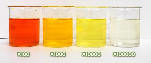 クチナシ黄色素・クロシンG-150の水溶希釈例(100倍~10万倍)