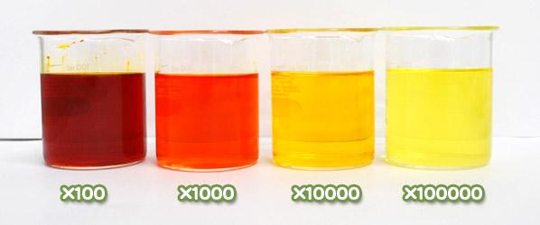 クチナシ黄色素・クロシンP-1900の水溶希釈例(100倍~10万倍)