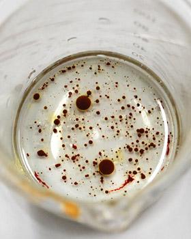 油に溶け込まない水溶性の天然色素