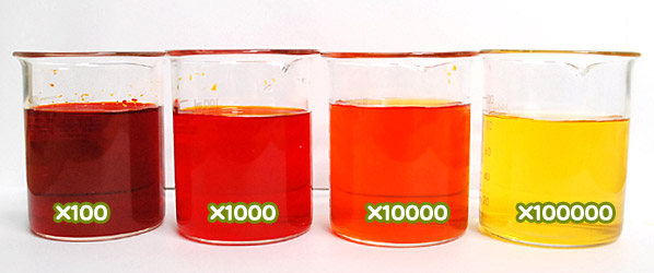 食用色素製剤 うに色SS-8の水溶希釈例(100倍~10万倍)